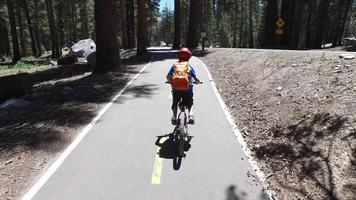 um menino anda de bicicleta em uma trilha pavimentada na floresta. video