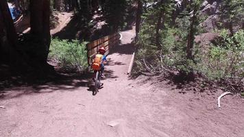 um menino anda de bicicleta em uma trilha de terra na floresta. video