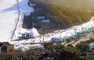 Gangwon-do, Korea, Jan 04, 2016 - Daemyung Vivaldi Park photo