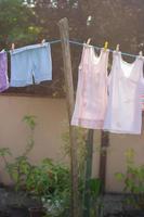 secado de ropa en el alambre, en el patio trasero foto