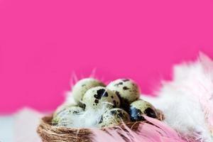 Huevos de codorniz en el nido con plumas de color rosa y blanco, sobre la mesa de madera blanca contra la pared rosa foto
