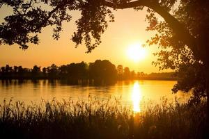 Sunset reflected in the water against a background of trees photo