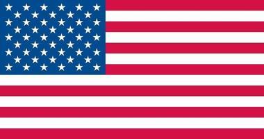USA officially flag vector