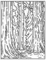 Groves of Giant Sequoias or Redwoods in Sequoia National Park in Sierra Nevada in California United States Mono Line or Monoline Black and White Line Art vector