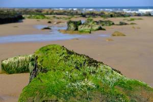 Arena y rocas en Short Sands Beach Tynemouth, Reino Unido foto