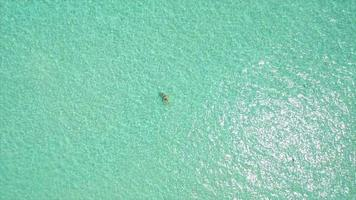 Aerial drone view of a woman floating and swimming on a tropical island. video