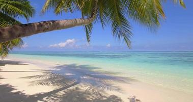 Aerial drone view of a scenic tropical island in the Maldives. video