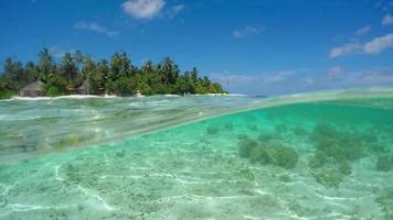 drone vanuit de lucht van een motorboot die naar een schilderachtig tropisch eiland op de Malediven gaat. video