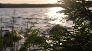 vista panorámica de un paisaje de lago al atardecer. video