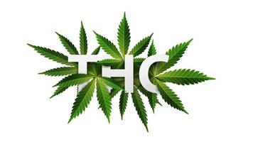 THC, logo, sign, symbol. 3D title decorated with cannabis leafs isolated on white background vector