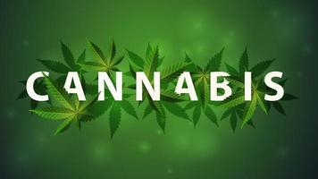 Cannabis sign, symbol. 3D title decorated with cannabis leafs vector