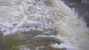 un río embravecido cascada de agua blanca. video
