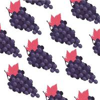 grapes fresh fruits pattern background vector