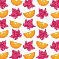oranges fruits and leafs pattern background vector