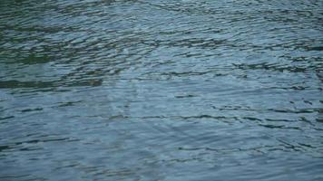 Ripples on water in Portofino, Italy, a luxury travel destination resort town in Europe. video