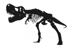 Tyrannosaurus Rex skeleton silhouette on isolated white background. vector