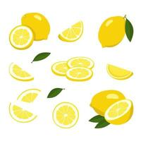 Lemon icons set. Bright whole fruit, half, slices with leaves. Food for a healthy diet, dessert, sweet lemonade products. Elements for spring and summer design vector