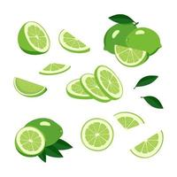 Lime icons set. Bright whole fruit, half, slices with leaves. Food for a healthy diet, dessert and lemonade. Elements for spring and summer design vector