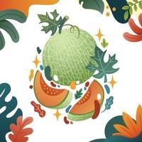 A Whole and Sliced Melon vector