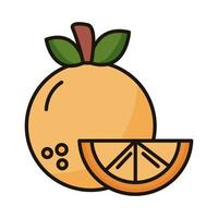 fresh orange fruit line and fill style icon vector