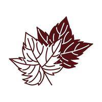 grape plant leaf nature icon vector