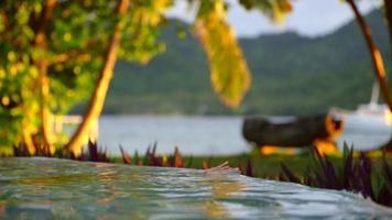 een vrouw zwemt in het zwembad van een hotelresort op een schilderachtig tropisch eiland in Fiji. video