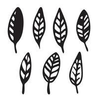 Hand Drawn vintage floral element decorative plant vector