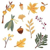 Autumn botany collection. Branches, leaves, grasses, mushrooms and acorns. Floral graphic design. Useful for textile, invitations, wrapping paper and autumn backgrounds. Vector cartoon illustration