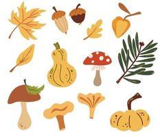 Set of autumn nature elements Forest objects Leaves, mushrooms, acorns, pumpkins. Fresh farm. Harvest elements. Vector illustration in cartoon style