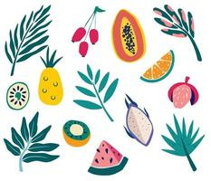 Set of tropical fruits and leaves. Exotic fruits and branches of palm trees.  Summer organic fruits or vegetarian food. Jungle flora. Vector isolated icons illustration in cartoon style