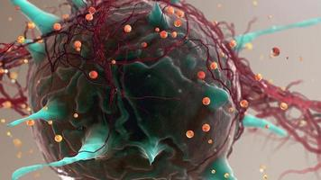 cellules du corps. virus. animation visualisation 3d video