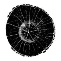 registro de árbol, anillos de crecimiento de madera textura grunge ilustración vectorial vector