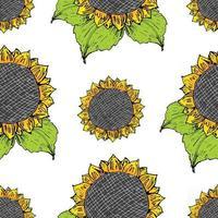 Sunflower seamless pattern hand drawn sketch, background, typography design vector illustration