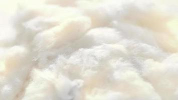 Cerrar textura de algodón fotografía macro textura del fondo foto