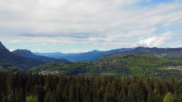 voando sobre a floresta de pinheiros video