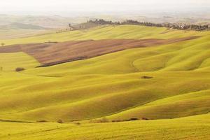 Landscape of Tuscany countryside photo