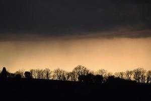 Bare trees silhouettes under dim cloud photo