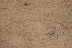 textura del barro y los arbustos foto