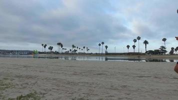 tiro de seguimiento de un hombre que hace jogging en la bahía y la playa. video