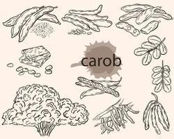 Carob sketch vector set