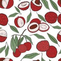 Seamless pattern with lychee fruits vector