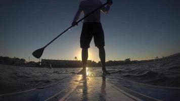 pov de un hombre remando una tabla de remo en un lago al atardecer. video