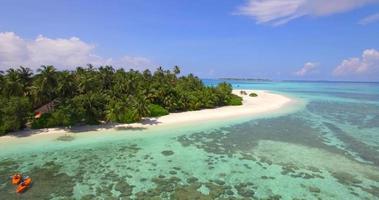 vista aérea do drone de um casal de homem e mulher passeando de caiaque em uma ilha tropical. video