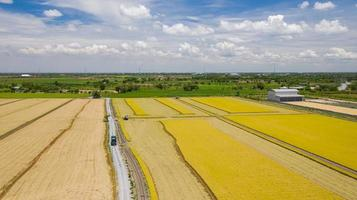 Aerial view of Harvester machine working in rice field from above photo