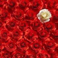 flor de papel, rosas blancas sobre fondo de rosas rojas, flor abstracta cortada de papel, decoraciones de boda foto