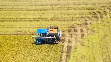 Aerial top view of Harvester machine working in rice field from above photo