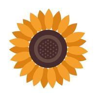 Hermoso icono aislado de decoración de girasol vector
