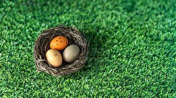 Easter eggs in a natural nest on a green background with grass texture. View from above. Banner photo