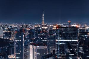 Tokyo ciity by night viewed from high up photo