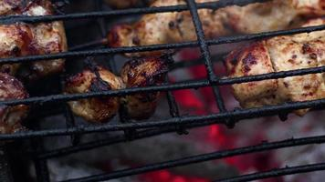Chicken Meat on a Coal Fire Barbecue video